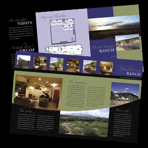 Desert Springs Ranch brochure